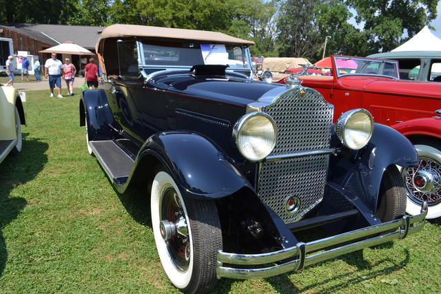 1931 Packard 833 Roadster